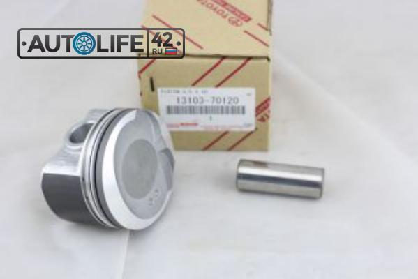 PISTON SUB-ASSY, W/PIN