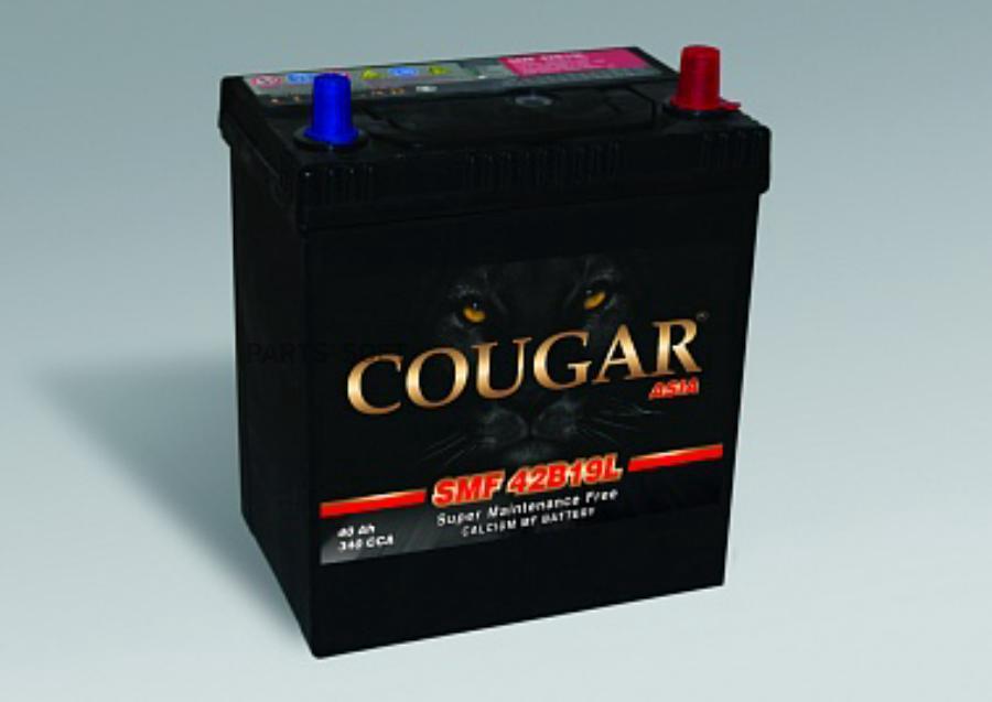 Аккумулятор COUGAR 42B19L