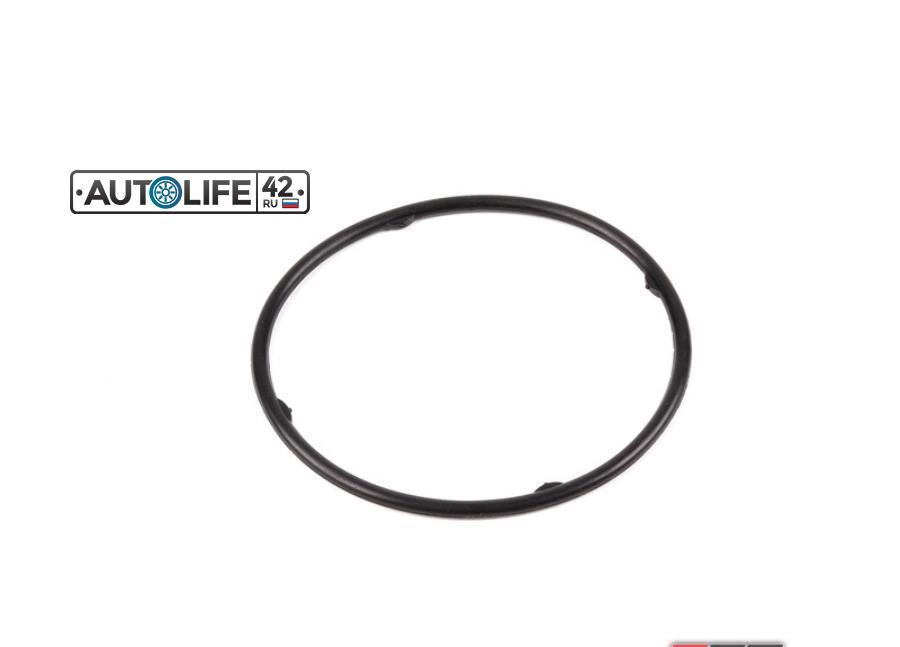 Sealing Ring Gasket