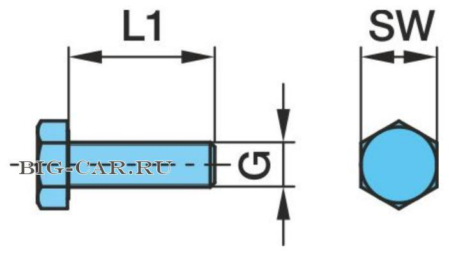 Болт крепления суппорта дискового тормоза