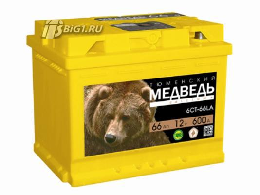 Тюменский Медведь 66.0