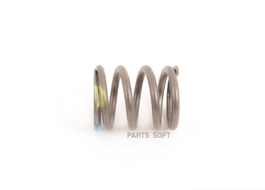 Outer valve spring